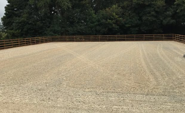 Equestrian arena with sand and fibre surface